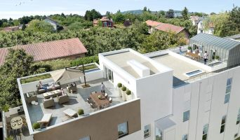 Champagne-au-Mont-d'Or programme immobilier neuve « Les Loges d'Or Ampère »  (2)