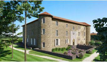 Chassagny : programme immobilier à rénover « Château de Chassagny » en Monument Historique