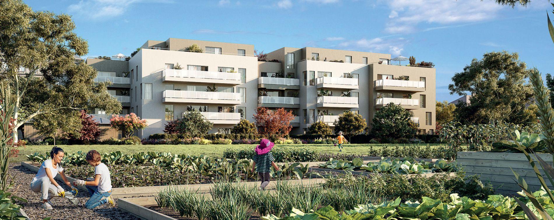 Vénissieux : programme immobilier neuve « Eklose »