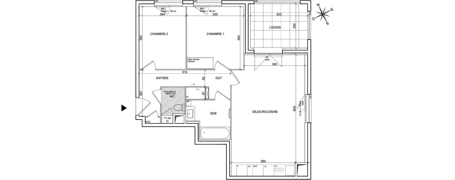 Appartement T3 de 63,88 m2 à Villeurbanne Poudrette les brosses