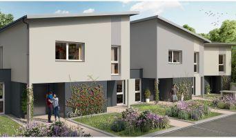 Programme immobilier neuf à Dijon (21000)