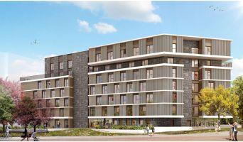 Brest programme immobilier neuve « Lemon »  (2)