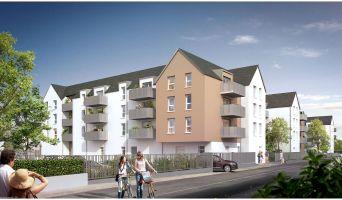 Loctudy programme immobilier neuve « Dimezell »  (2)