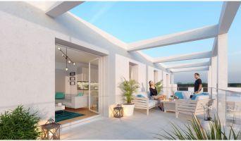 Résidence « Plein Ciel » programme immobilier neuf en Loi Pinel à Rennes n°3