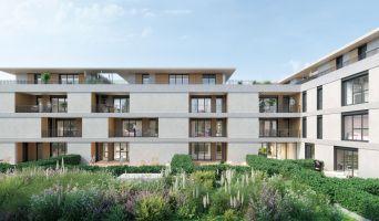 Porto-Vecchio programme immobilier neuve « La Closerie de l'Alivu »  (2)