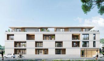 Porto-Vecchio programme immobilier neuve « La Closerie de l'Alivu »  (3)