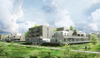 Programme immobilier neuf à Ostwald (67540)