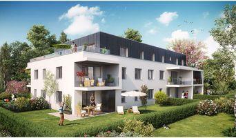 Programme immobilier neuf à Colmar (68000)