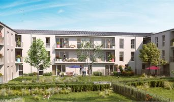 Reims programme immobilier neuve « Alfred &Jules » en Loi Pinel  (2)