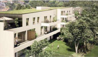 Résidence « L'Intemporel » programme immobilier neuf en Loi Pinel à Laxou n°1