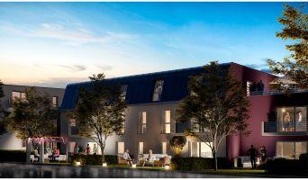 Nancy programme immobilier neuve « L'Ecrin des Jardiniers » en Loi Pinel  (4)