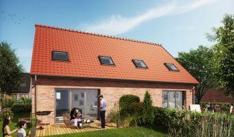 Bauvin programme immobilier neuve « La Roselière »  (2)