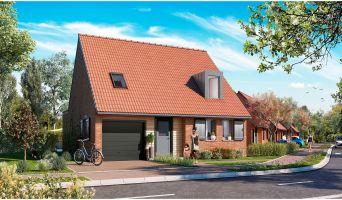 Photo du Résidence « Côté Village Maisons » programme immobilier neuf à Beaucamps-Ligny