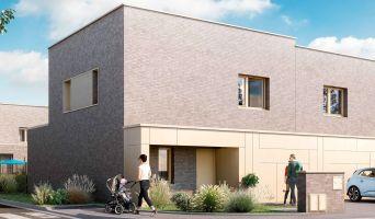 Programme immobilier neuf à Templeuve (59242)