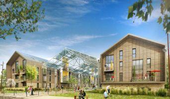 Programme immobilier neuf à Ris-Orangis (91000)