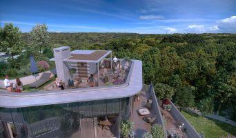 Vélizy-Villacoublay programme immobilier neuve « Canopée Vélizy Villacoublay »  (3)