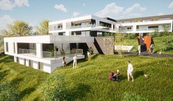 Mont-Saint-Aignan programme immobilier neuve « Le Parc Bellevue » en Loi Pinel  (2)