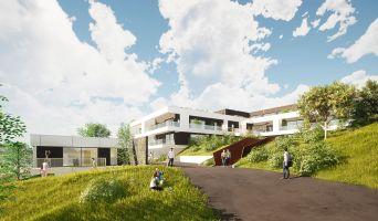 Mont-Saint-Aignan programme immobilier neuve « Le Parc Bellevue » en Loi Pinel  (4)