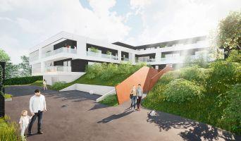 Mont-Saint-Aignan programme immobilier neuve « Le Parc Bellevue » en Loi Pinel  (5)
