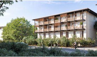Biganos programme immobilier neuve « Terre de Bassin » en Loi Pinel  (2)