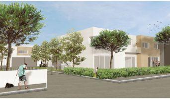 Photo n°2 du Résidence neuf « Villas Lartigue »