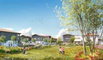 Résidence « Le Parc De La Séoube » programme immobilier neuf en Loi Pinel à La Teste-de-Buch n°3
