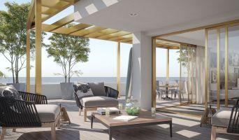 Lacanau programme immobilier neuve « L'Oyat »  (2)