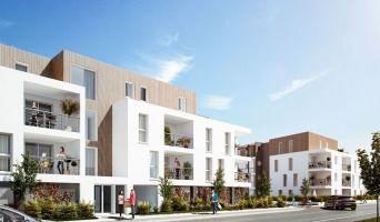 Programme immobilier neuf à Dax (40100)