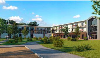 Saint-Paul-lès-Dax : programme immobilier neuf « Les Girandières Soleil de Gascogne »