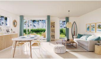 Photo du Résidence « Océan Lodges » programme immobilier neuf en Loi Pinel à Seignosse
