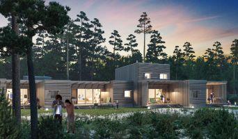 Pindères programme immobilier neuve « Les Landes de Gascogne »  (2)