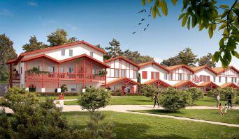 Résidence « Le Domaine D'Uhaina » programme immobilier neuf à Urrugne n°2