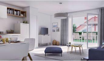 Résidence « Le Domaine D'Uhaina » programme immobilier neuf à Urrugne n°4
