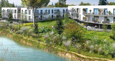 Aigues-Mortes programme immobilier neuf « Le Mas Saint Louis »