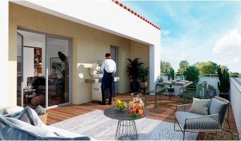Castelginest programme immobilier neuve « Esprit Gakoa »  (2)