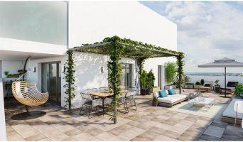 Photo du Résidence « 252 Faubourg » programme immobilier neuf en Loi Pinel à Toulouse
