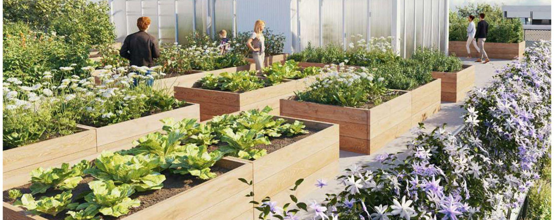 Toulouse : programme immobilier neuve « Natura » en Loi Pinel (4)