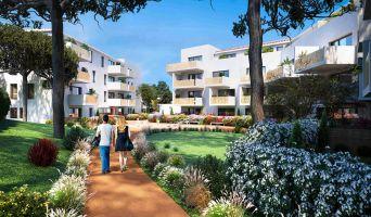 Balaruc-les-Bains programme immobilier neuve « L'écrin Bleu »  (3)