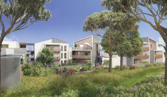 Grabels programme immobilier neuve « Vert Azur » en Loi Pinel  (2)