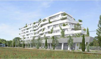 Lattes programme immobilier neuve « Mira »