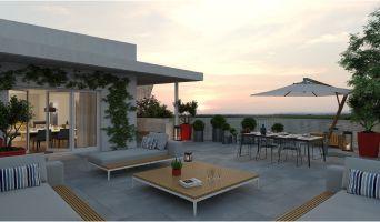 Lattes programme immobilier neuve « Mira »  (5)