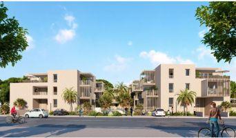 Programme immobilier n°216333 n°1