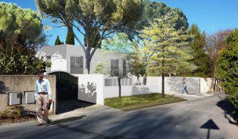 Résidence « Epure » programme immobilier neuf en Loi Pinel à Montpellier n°4