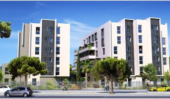 Montpellier : programme immobilier neuf « Fac Story »