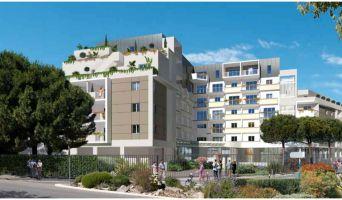 Résidence « Les Balcons De Montcalm » programme immobilier neuf à Montpellier n°2