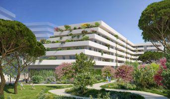 Sète programme immobilier neuf « Móda » en Loi Pinel