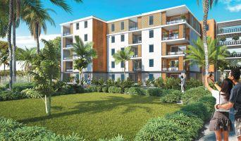 Abymes : programme immobilier neuf « Les Trois Arts - Bât. A » en Loi Pinel