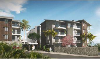 Résidence « Castel Roc » programme immobilier neuf en Loi Pinel à Saint-Denis n°2