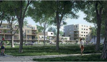 Résidence « Arenae » programme immobilier neuf en Loi Pinel à Nantes n°1