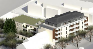 Angers : programme immobilier neuf « Le Moringa » en Loi Pinel